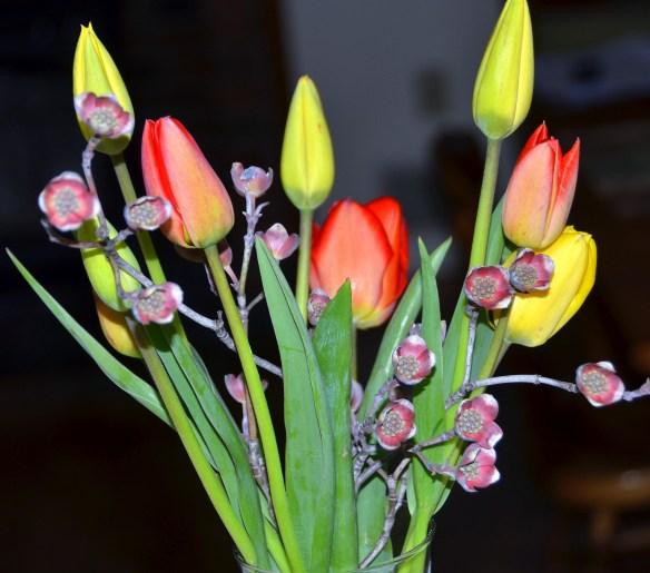 Springtime (27)