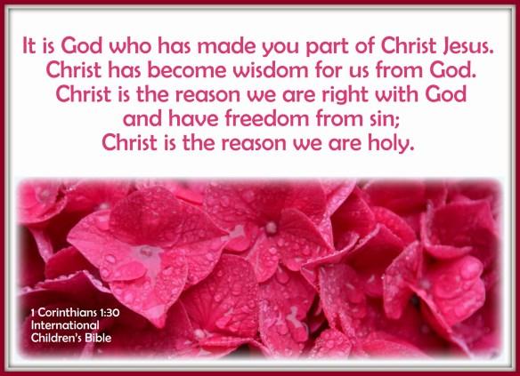 1 Corinthians 1-30