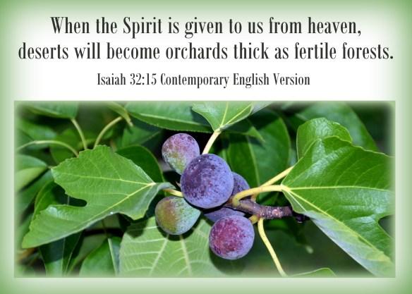 Isaiah 32-15