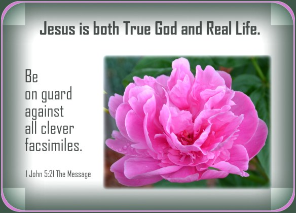 1 John 5-21