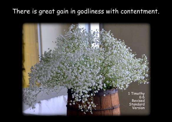 1 Timothy 6-6