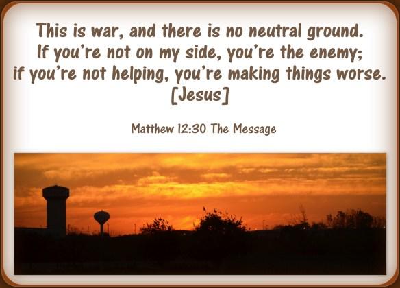 Matthew 12-30