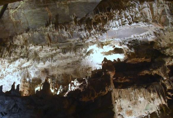 Penn's Cave (15)