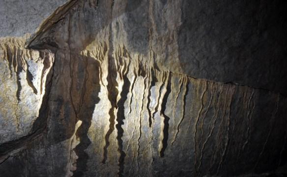 Penn's Cave (30)