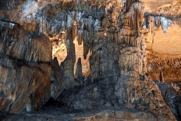 Penn's Cave (35)