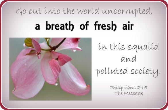 Philippians 2-15