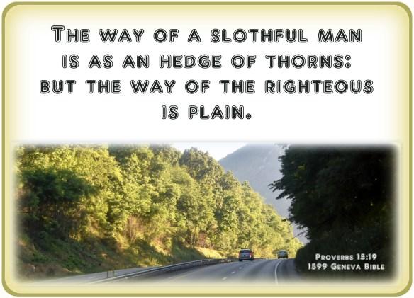 Proverbs 15-19
