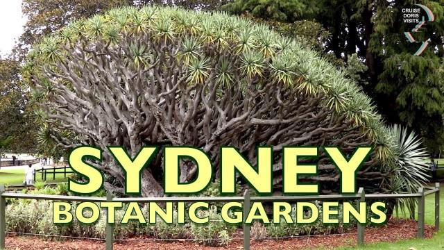 Sydney Botanical gardens are right opposite the tender dock and Opera House