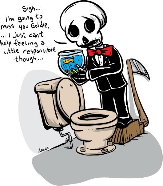 Skully – fish flush