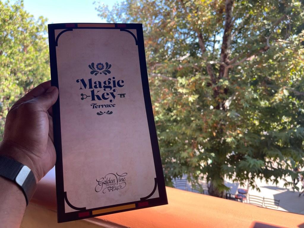 magic key terrace at dca