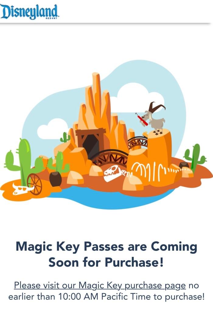 line queue for magic key on disneyland website