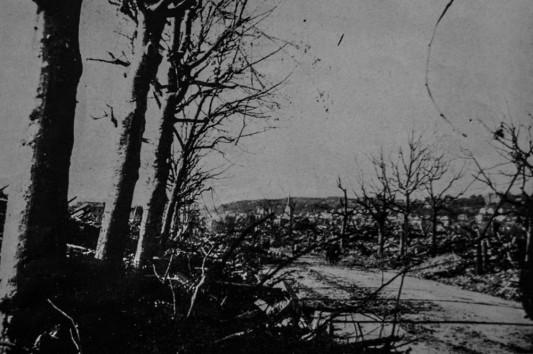 """Le Boulevard François Ier.  Photo: W. Beaufils. In Pierre Aubery, """"le siège et la bataille du Havre (1er au 12 septembre 1944) d'après des documents anglais"""", in Études normandes, Livraison 12 N°39 3 trimestre 1954 ."""
