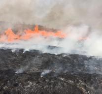 Több hektárnyi terület lángolt Dorog és Kesztölc között