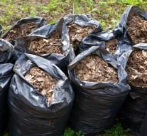 Zöld- és szelektív hulladékok begyűjtése