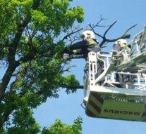 A tűzoltóknak hála megmenekültek a csolnoki óvodások