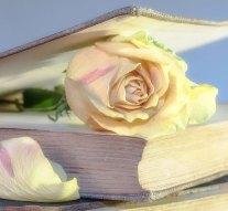 Ünnepi könyvhét Dorogon