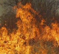 Száraz fű égett Dorog külterületén