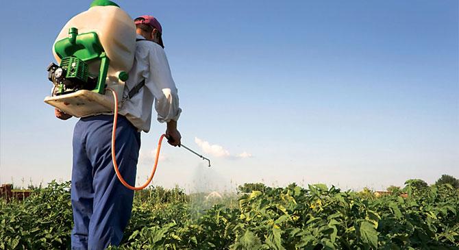 Ingyenesen elszállítják a hulladékká vált növényvédő szereinket