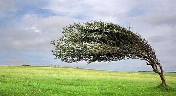 Felhívás erős szélre