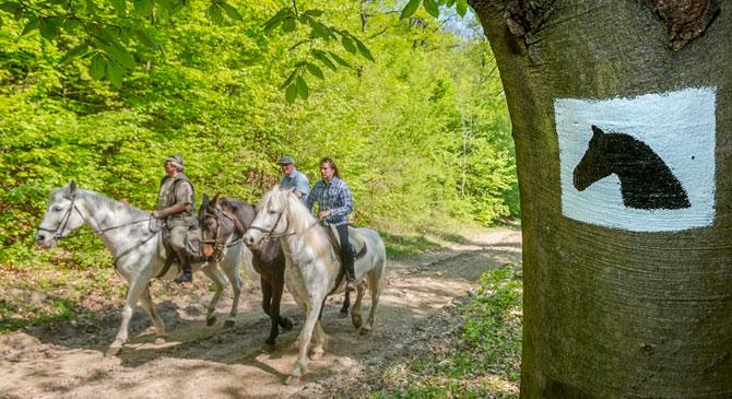 Átadták a Pilis Ride úthálózatot