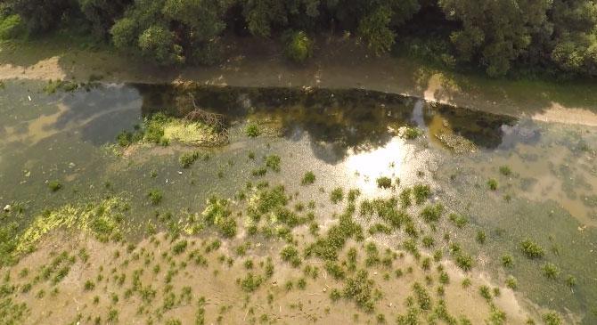 Videó: a Duna vízállása Tátnál