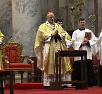 Hálaadó szentmisét celebrált Erdő Péter bíboros