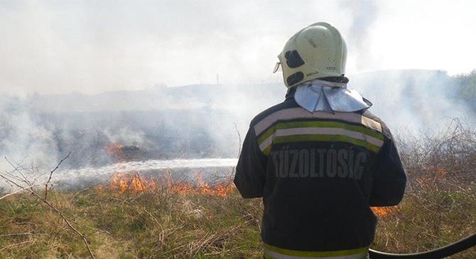 Aljnövényzet és szemét égett Esztergom-Kertvárosban