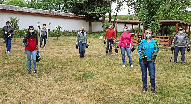 Őshonos fákat ültettek a dorogi gimnáziumban