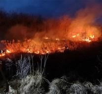 Ismét avartűzhöz siettek a nyergesi tűzoltók
