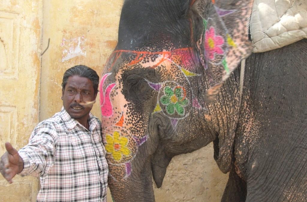 Zabij strach słoniem w kwiatki