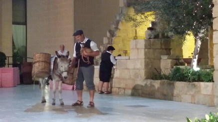 A Donkey and a Goat Kid