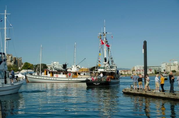 boats vic fest 5