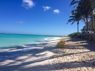 Cow Wreck Bay is a good example of untouched Anegada, BVI. (photo by dorothyadele)