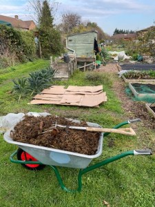 This image shows cardboard being laid down to suppress weeds in a no dig bed.