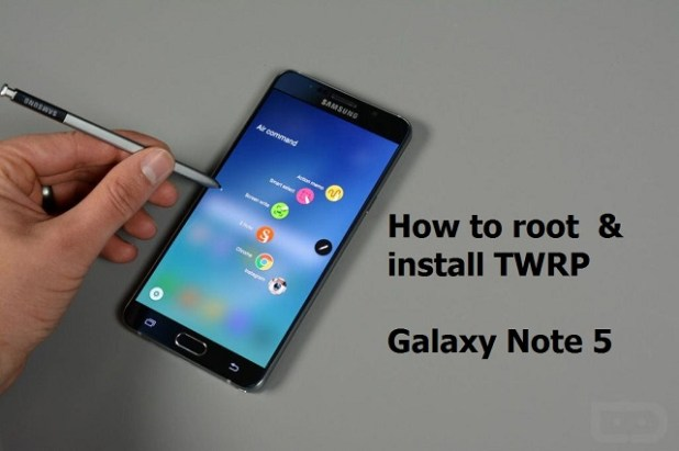 Root Note 5