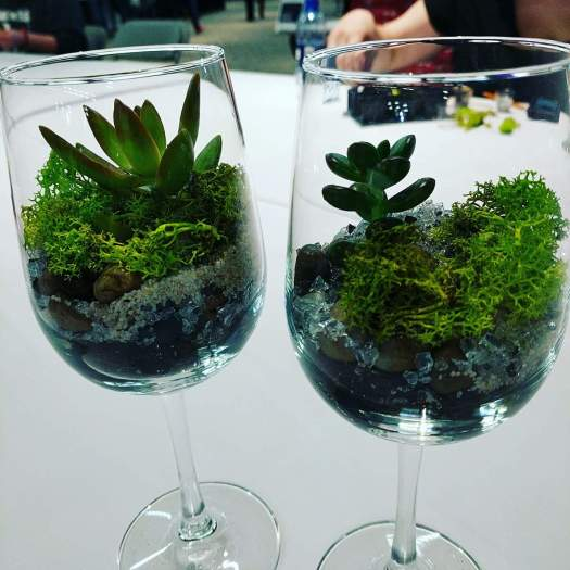 How to create a wine glass succulent terrarium 11