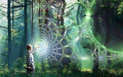 El cerebro como holograma, por Michael Talbot