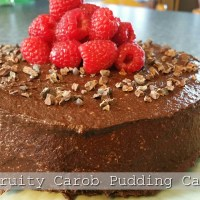 Sans Sucre - Chocolate Cake Revisited