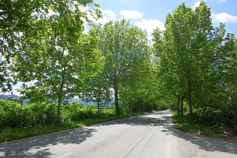 Vía Aurelia antigua