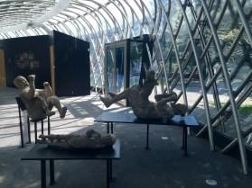 Moldes de cuerpos humanos tras la erupción del Vesubio