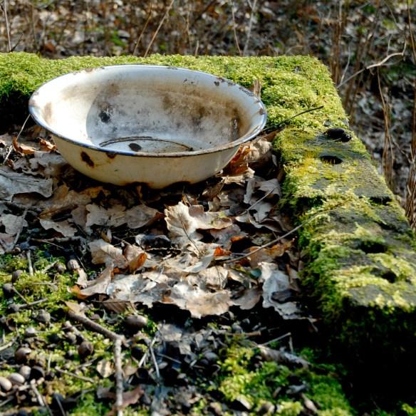 2008-02-25 D200 Wächtersbach Wald Abrisshaus 006