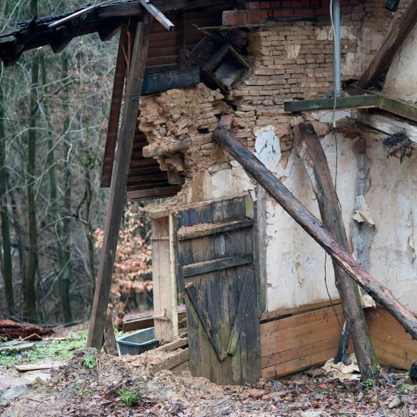 2012-12-28 D700 Waldspaziergang Wächtersbach 131
