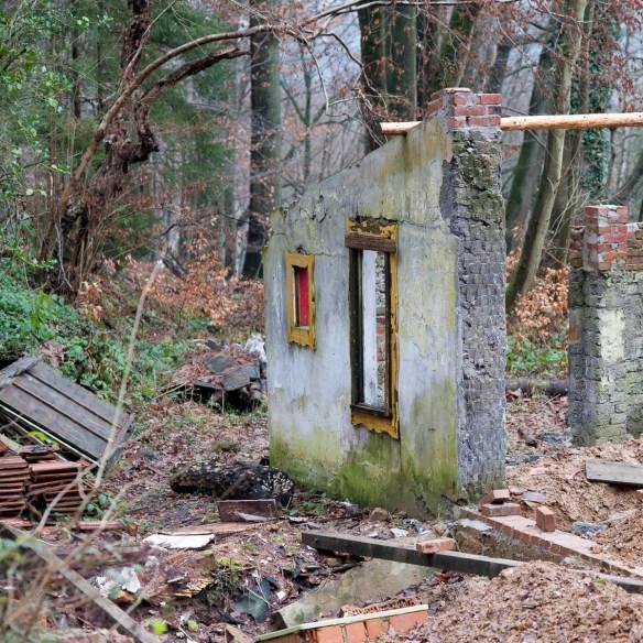 2012-12-28 D700 Waldspaziergang Wächtersbach 132
