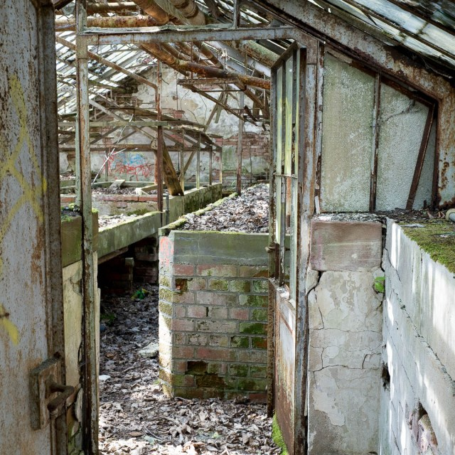 Lost Places Verlassene Gewächshäuser