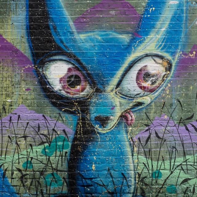 London camden himbad graffiti