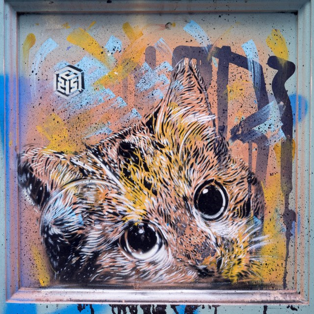 Streetart by C215 in Berlin