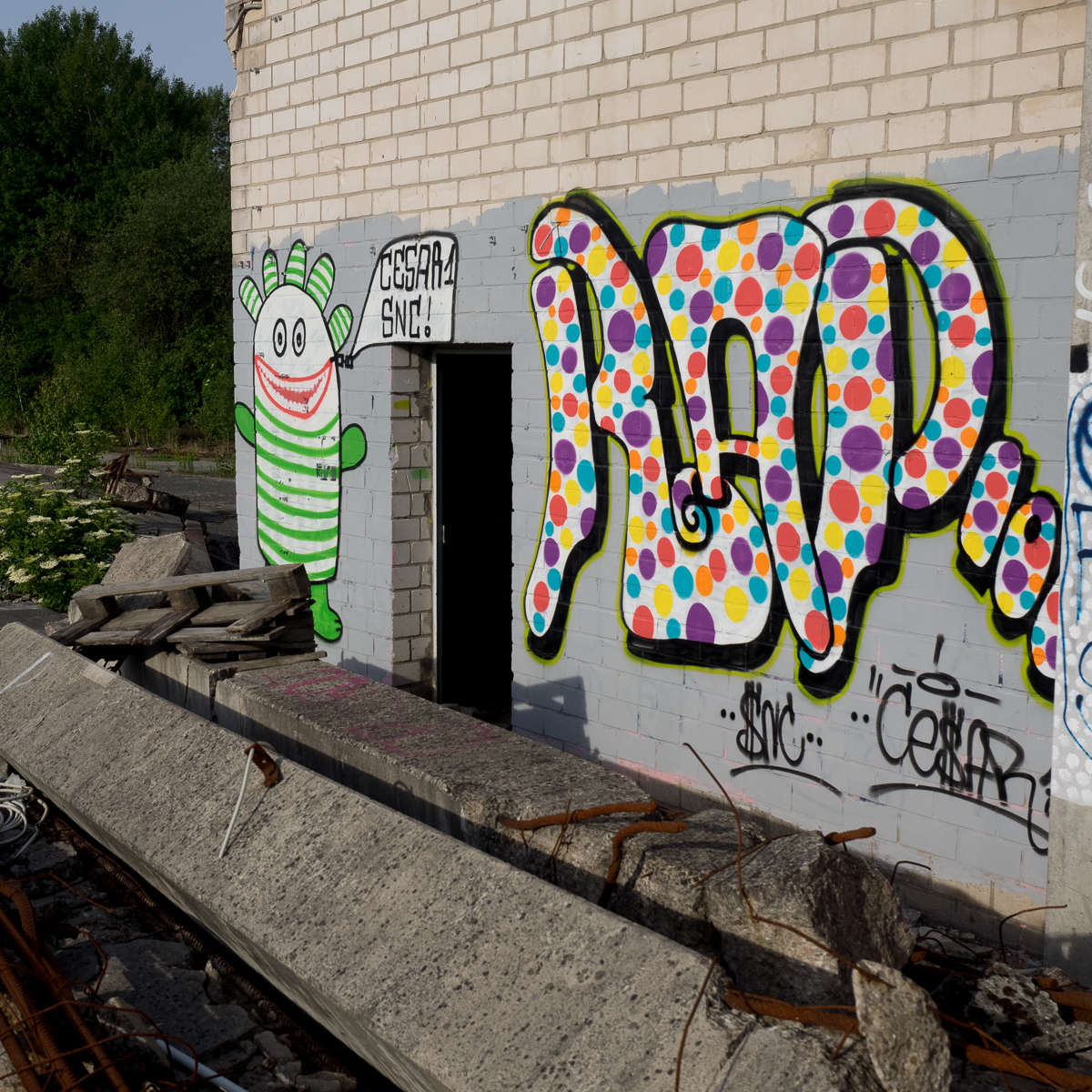 Graffiti Special - Cesar One / SNC