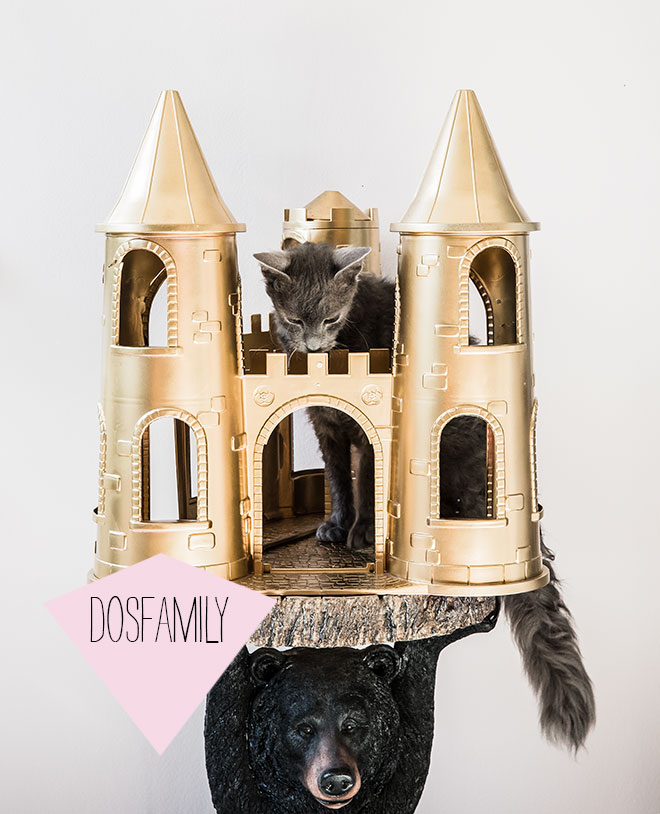 dosfamily-mylittlepony-castle-with-cat