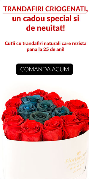 trandafiri criogenati, trandafiri conservati, trandafiri nemuritori