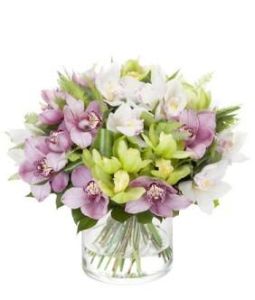 Flori de Constantin si Elena, Buchet orhidee colorata, doar 471,99 RON